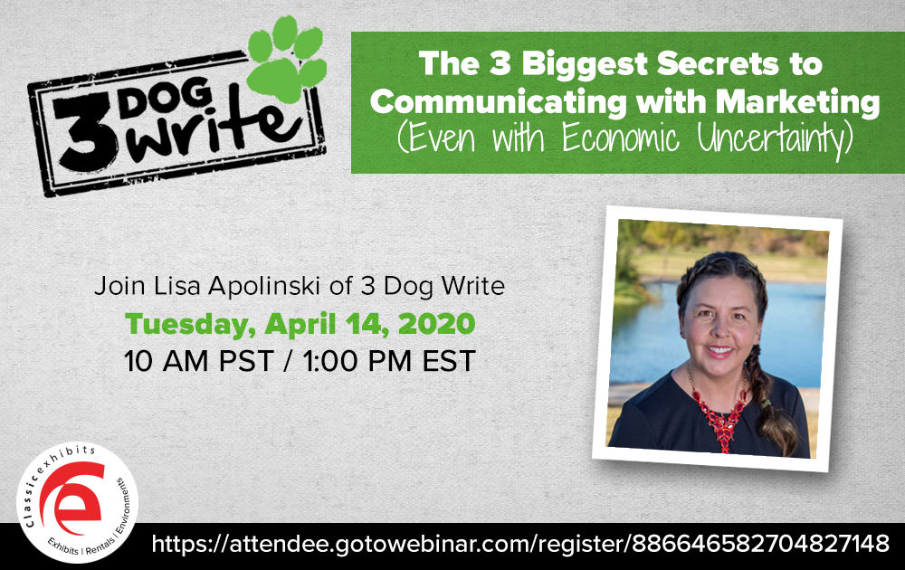 Lisa Apolinski from 3 Dog Write conducts a webinar on communicating with Marketing